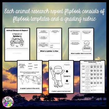 Animal Research Report Flipbooks BUNDLE
