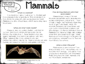 Animal Classification Articles