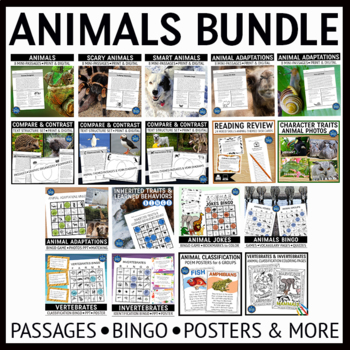 Animals Activities Bundle