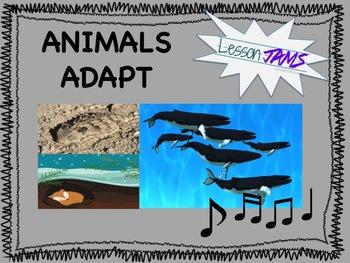 Science Song: Animals Adapt! MP3 & Lyrics