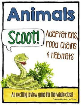 Animals: Adaptations, Food Chains and Habitats