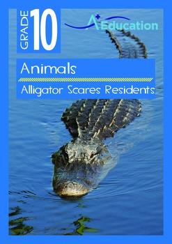 Animals - Alligator Scares Residents - Grade 10