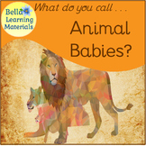 Animals And Their Young - Montessori Language - Correct Ex