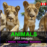Animals: Animal Habitats, Adaptations, Classification - 360 Images (Canada)
