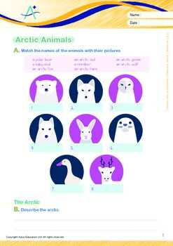 Animals - Arctic Animals: Animals of the Arctic - Grade 2