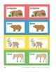 Animals Around the World: Alphabet Cards