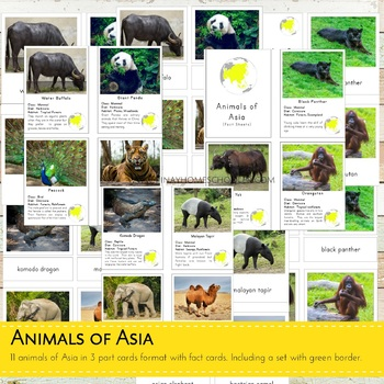 MontessoriLove  Animals Around the World Bundle Pack
