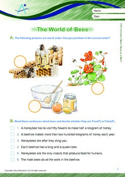 Animals - Bees: Busy as a Bee - Grade 6
