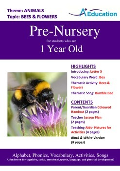 Animals - Bees and Flowers : Letter X : Box - Pre-Nursery (1 year old)