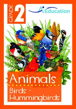 Animals - Birds (II): Hummingbirds - Grade 2
