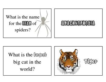 Animals Brain Builder Task Cards