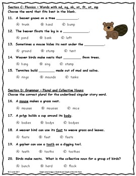 Animals Building Homes ~ Language Arts Test ~ 2nd Grade ~ HMH Journeys