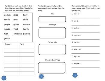 Animals Building Homes Tri-fold: Journeys Grade 2; Lesson 3