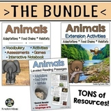 Animal Adaptations, Food Chains & Habitats BUNDLE