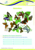 Animals - Butterflies: The Butterfly's Incredible Life Story - Grade 3