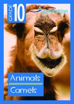 Animals - Camels - Grade 10