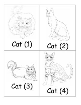 Animals Cards