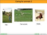 ESL resource: Animals (Caring for animals) Interactive Resource  2