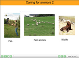 ESL resource: Animals (Caring for animals) Interactive Res