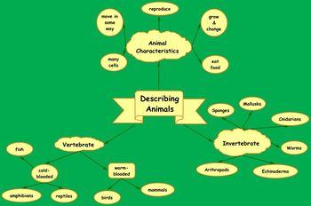 Animals Characterics Brainstorming Web
