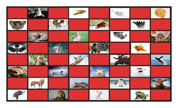 Animals Legal Size Photo Checkerboard Game