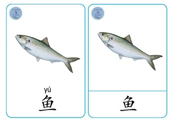 Animals Chinese Flashcards - 动物字卡