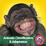 Animals: Classification & Adaptation Gr. 4-6