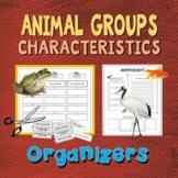 Animal Groups: Characteristics