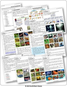 Animals Classification Pack - Teaching whole animal kingdom with Worksheets