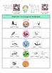 Animals Classification - Vertebrates Classification Activi