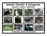 Classify & Categorize Animals (mammals, reptiles, amphibians)