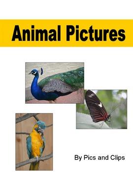 Animals Clip Art