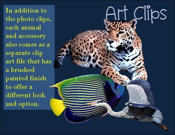 Animal Clip Art Habitat & Biome Real Clips Photo & Artistic Digital Stickers