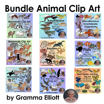 Animal Clip Art Bundle of 466 clips of 129 animals in semi Realistic Style