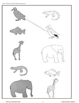 Animals Come in Many Sizes, Shapes, and Colors