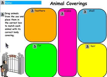 Animals Covering