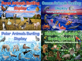 Habitats: Animals Display Bunting Pack