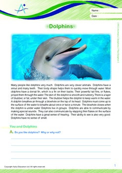 Animals - Dolphins: The Dolphin - Grade 5