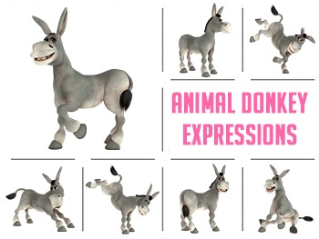 Animals Donkey Expressions Clipart Images