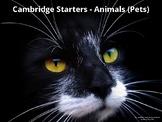 Animals - ESL EFL Children - pre A1 including Cambridge Starters