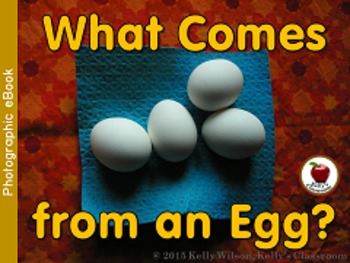 What Comes from an Egg Emergent Reader BUNDLE