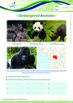Animals - Endangered Animals (II): The Panda - Grade 5