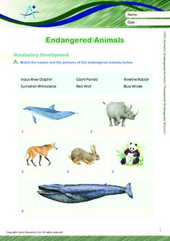 Animals - Endangered Animals (II): Threatened, Endangered, Extinct - Grade 6