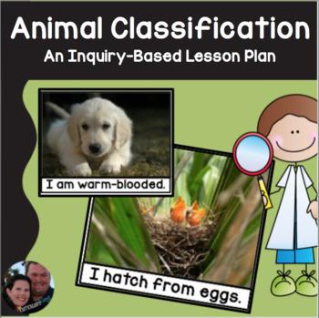 Animals Everywhere Lesson Plan