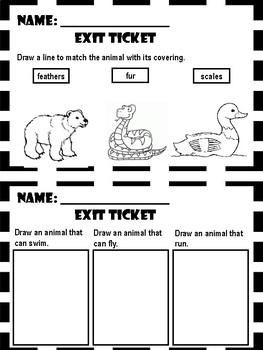 Animals - Exit Tickets