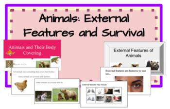 Animals- External Features