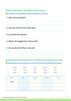 Animals - Fish (I): Fish Live In Water - Grade 4