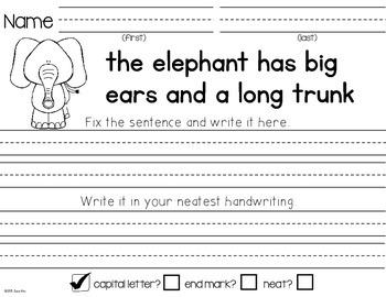 Fix the Sentences-Animals