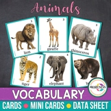 Animals Vocabulary Photo Cards: Flashcards for Speech Therapy, Autism and ESL