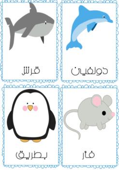 Animals Flashcards (Arabic)